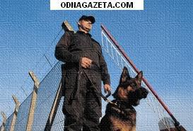 купить Приватне охоронне підприємство набирає чоловіків кривой рог объявление 1