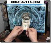 купить Доп. доход для пользователей интернета. кривой рог объявление 1