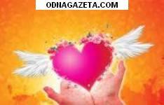 купить Красивая брюнетка, 37/165/60, Козерог, Чп, кривой рог объявление 1