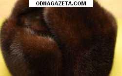 купить Пр. муж. норковую шапку коричневого кривой рог объявление 1