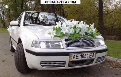купить Свадебное авто Skoda Octavia. 0676381101. кривой рог объявление 1