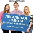купить Оказываем помощь в оформлении Польской рабочей  кривой рог объявление 1