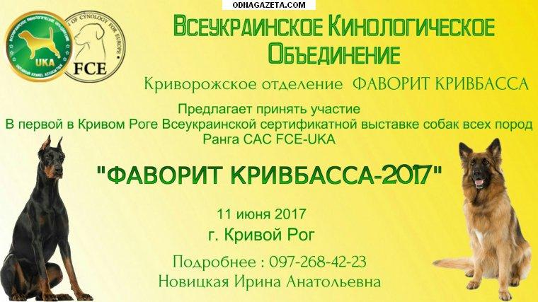 купить Кинологический клуб «Фаворит Кривбасса», приглашает кривой рог объявление 1