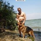 купить 2500 Продам чистокровных щенков немецкой овчарки.  кривой рог объявление