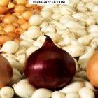 купить Весенний лук-севок компании Broer Bv (Нидерланды).  кривой рог объявление