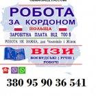 купить Готовим документы на Визу в Посольство  кривой рог объявление