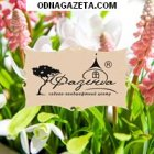 купить Садово – ландшафтный центр «Фазенда» -  кривой рог объявление