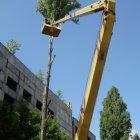 купить Cпил (Удаление) и обрезка деревьев любой  кривой рог объявление