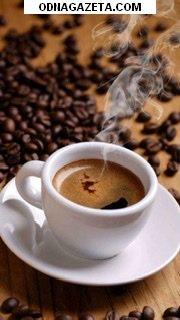 купить Продам кофейню на 95 кв, кривой рог объявление 1