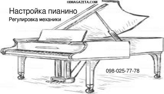 купить Настройка пианино, регулировка механики, чистка кривой рог объявление 1