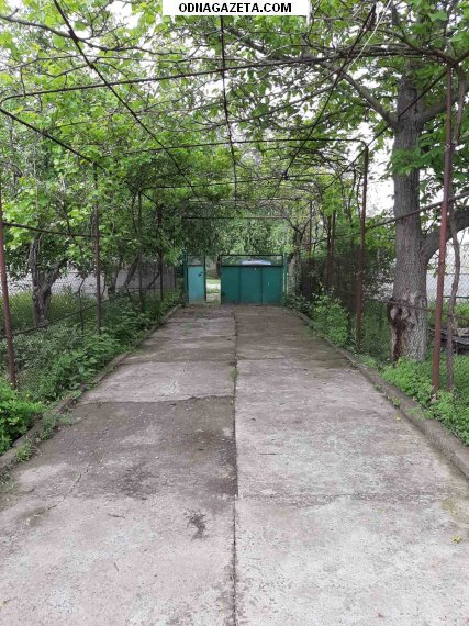 купить Продам дом в селе Зеленый кривой рог объявление 1
