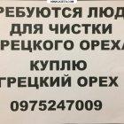 купить Чистка грецкого ореха  Центр Городской  кривой рог объявление