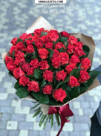 купить 51 красная роза Эль Торо кривой рог объявление 1