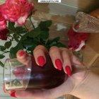 купить Малиновое вино домашнего приготовления. 1 литр  кривой рог объявление