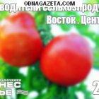 купить База данных Агробизнес Украины плюс 2020  кривой рог объявление