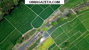 купить Продам земельный участок 10 соток. кривой рог объявление 1