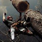 купить Спил деревьев аварийных, сухостойных, над крышами,  кривой рог объявление