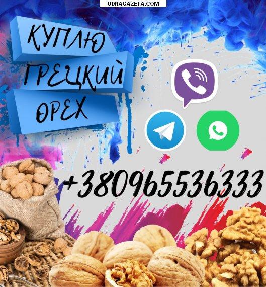 купить Куплю грецкий орех целый и кривой рог объявление 1