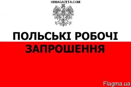 купить Польские рабочие приглашения! На полгода(с кривой рог объявление 1