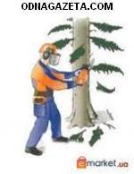 купить Спил деревьев бензопилой любой сложности, кривой рог объявление 1