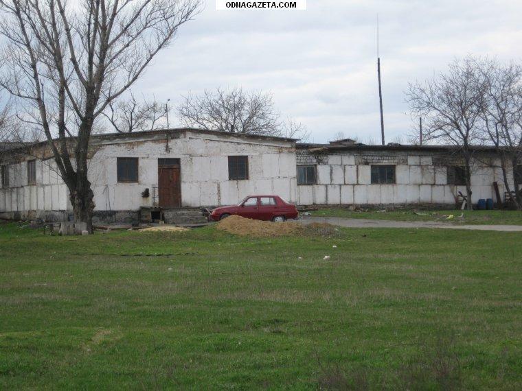 купить Продам ферму в Лозоватке за кривой рог объявление 1