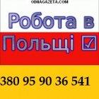 купить Окажем Вам помощь в оформлении Польской  кривой рог объявление