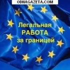 купить Предлагаем Контракт с польским работодателем на  кривой рог объявление 15