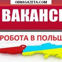 купить Делаем польские рабочие визы для кривой рог объявление 1