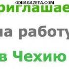 купить Легальная работа в Польше и Чехии  кривой рог объявление 7