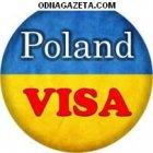 купить Требуются Водители Се. Работа в Польше.  кривой рог объявление