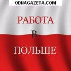 купить Набор разнорабочих в Польшу. Мужчины и  кривой рог объявление